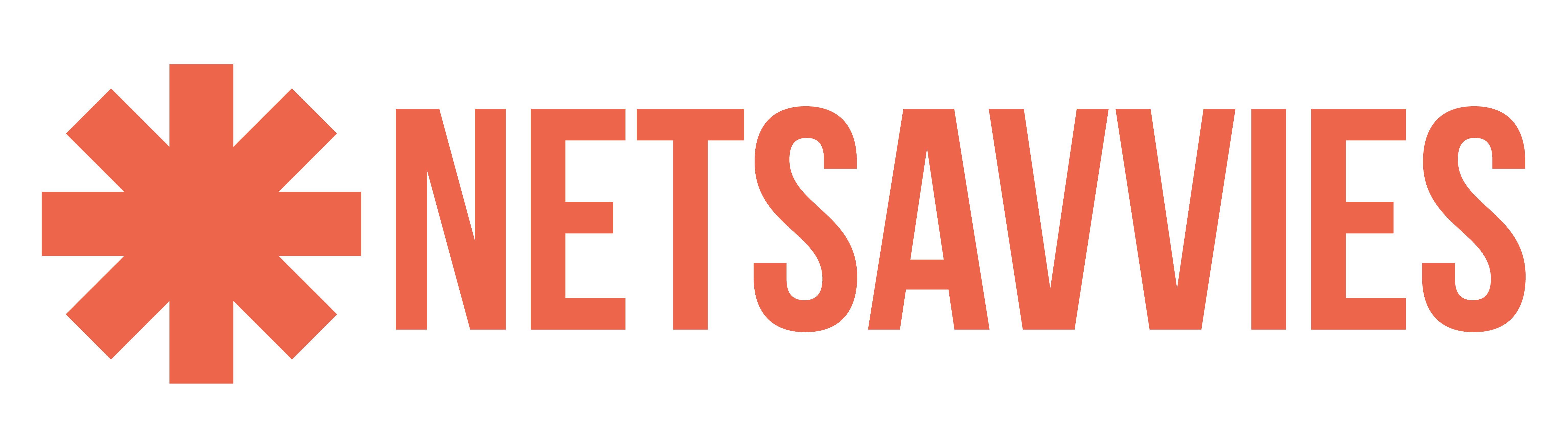 Netsavvies - Digital Marketing Agency in Ahmedabad