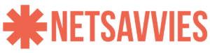 netsavvies logo orange